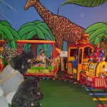 Safari-Train